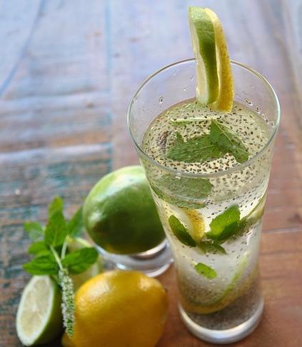 chia-lemonade-2294518_640